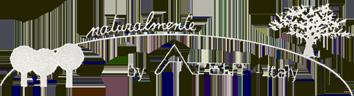 Logo Atelit